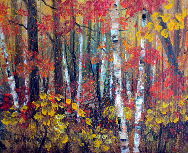 Fall Woods Birch Trees by Laura Tasheiko, Maine Artist