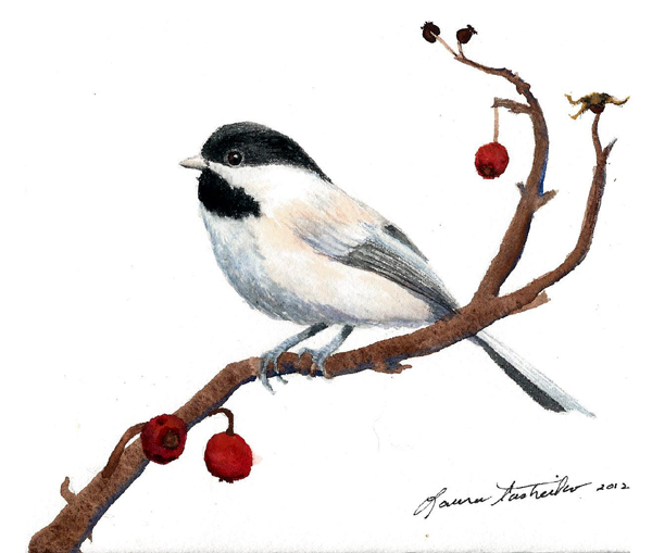 Chickadee by Laura Tasheiko