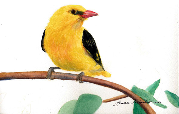 Goldfinch by Laura Tasheiko