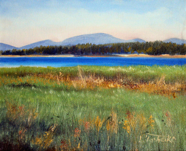 Mt Desert Marsh by L. Tasheiko, Maine Artist